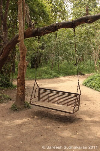 ParkSwing