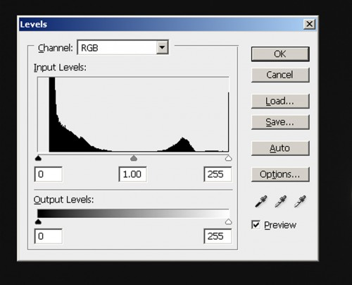 Histogram_Camera RAW